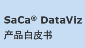 东软 数据可视化 白皮书