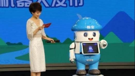 可以定制<em>服务机器人</em>的公司介绍?有哪些定制机器人案例-小笨智能