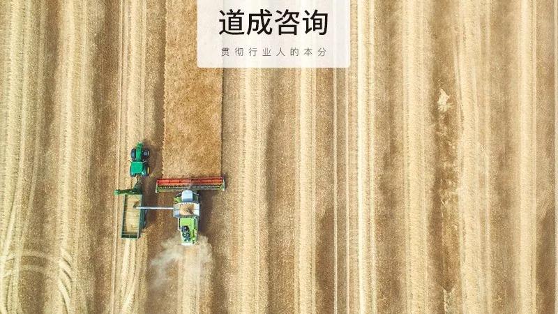 江苏宇彤与道成咨询合作再升级,数字化经营成为企业发展的强力助推器