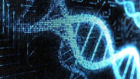 生物图像的数据集可用于开发新的人工智能算法 | 硅谷洞察