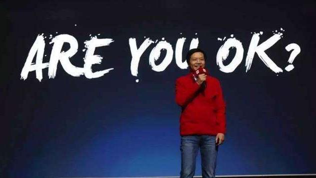 双品牌策略并非良策,红米独立真的是一步好棋吗?
