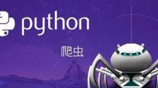 Python网络爬虫专项视频教程