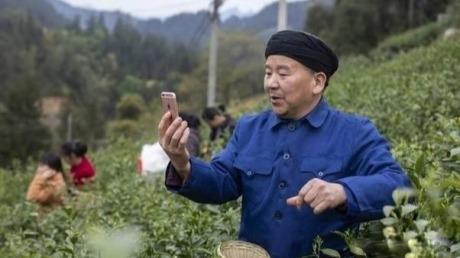99%电商人看不懂的拼多多逻辑,未来中国最大的农贸批发市场
