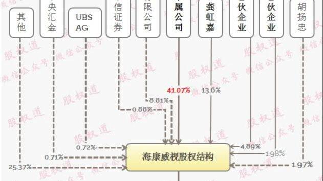 海康威视天使投资人龚虹嘉,花1亿做股权激励赚800亿元