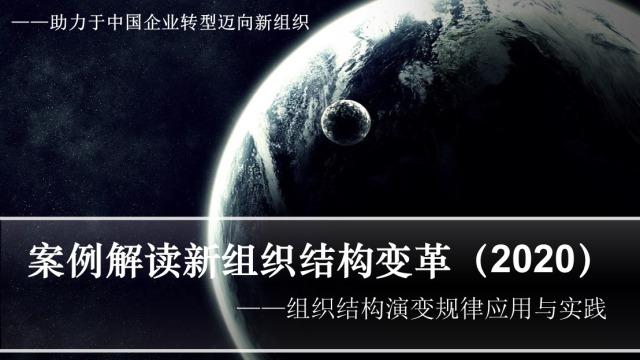 案例解读新组织结构设计(杨少杰,2020)