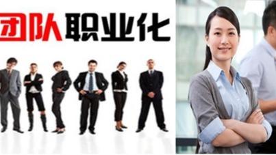 《卓越职业人的工作方法》