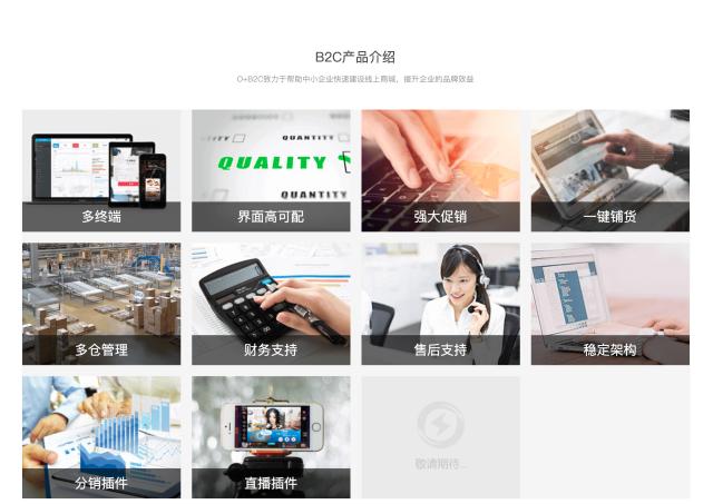 智能电商平台-B2C